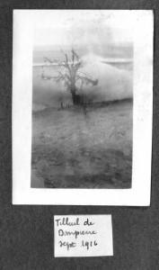 Tilleuil sept 1916